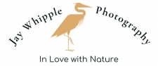Jay Whipple Photography Logo